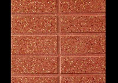 4711R -10 pastillas rojo pulido 40x40